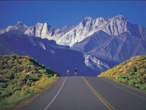 bike mammoth specialized s-works race road